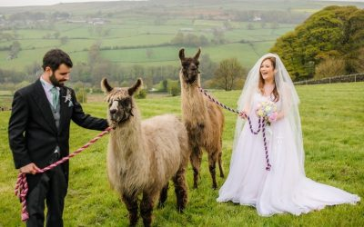 Quirky Wedding Trends